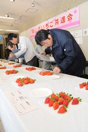 イチゴを審査する審査員(9日、岡山市役所で)